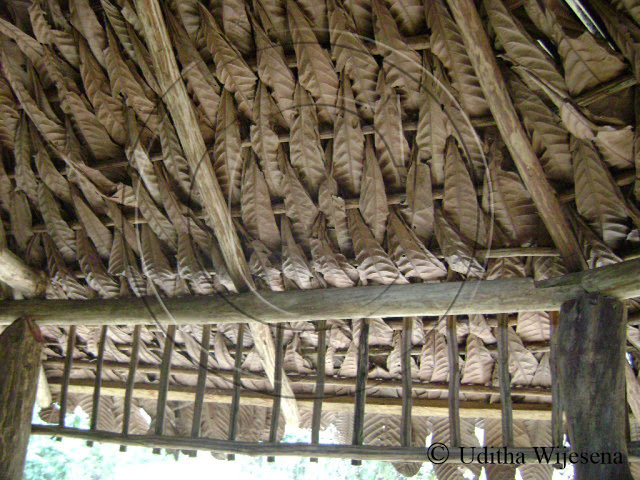 Paradise fanwenting specialization5 paradise sri lanka for Types of roof covering materials